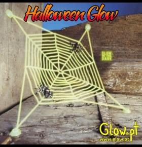 Teia Glow (27 x 27 cm) c/ 2 aranhas